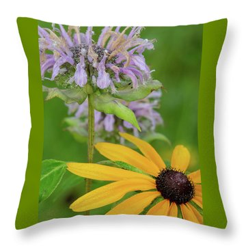 Throw Pillow featuring the photograph Harmony In Nature by Dale Kincaid