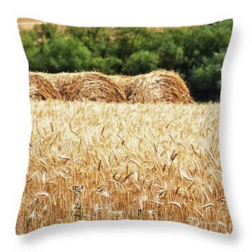 Throw Pillow featuring the photograph Harvest Time In Idaho by Tatiana Travelways