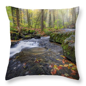 Throw Pillow featuring the photograph Hatch Brook by Bill Wakeley