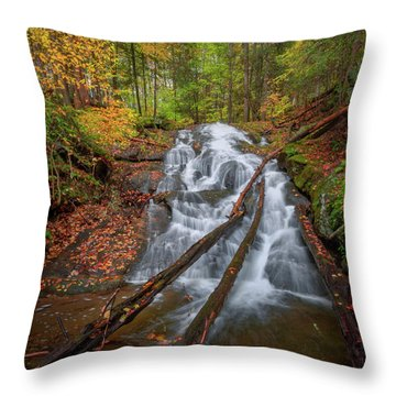 Throw Pillow featuring the photograph Hatch Brook Falls Autumn by Bill Wakeley
