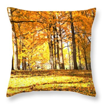 Throw Pillow featuring the photograph Have A Seat by Candice Trimble