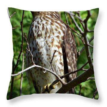 Hawk Brings Thrills Throw Pillow