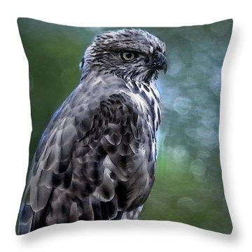 Hawk Eagle  Throw Pillow