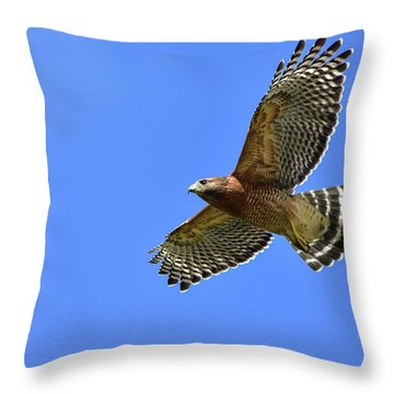 Hawk On The Go Throw Pillow