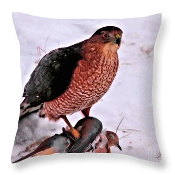 Throw Pillow featuring the photograph Hawk Takes Dove by Debbie Stahre