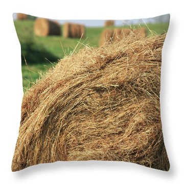Throw Pillow featuring the photograph Hay Bail Closeup by Tatiana Travelways