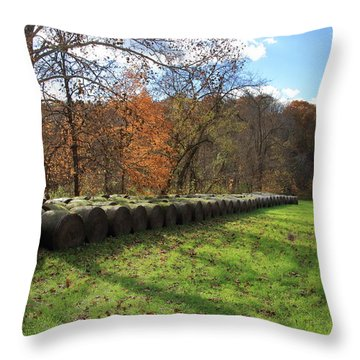 Throw Pillow featuring the photograph Hay Bales On An Autumn Day by Angela Murdock