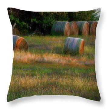 Hay Bales Throw Pillow