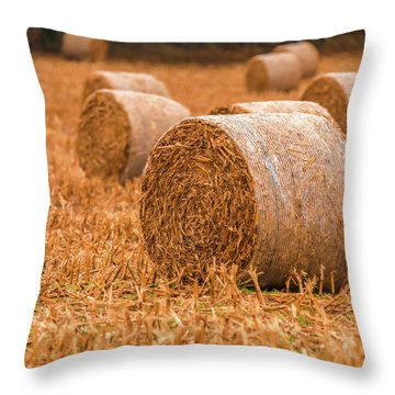 Throw Pillow featuring the photograph Hay Rolls by Dan Sproul