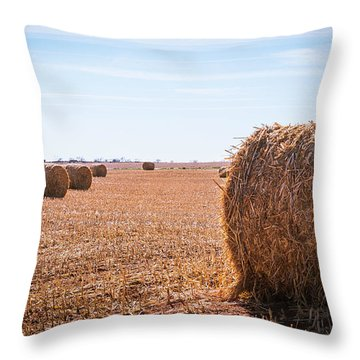 Throw Pillow featuring the photograph Hay Rolls by Dheeraj Mutha