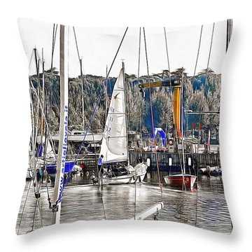 Throw Pillow featuring the photograph Heading For The Lake by Dorothy Berry-Lound