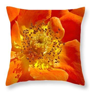 Heart Of The Orange Rose Throw Pillow