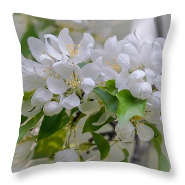 Heavenly Blossoms Throw Pillow