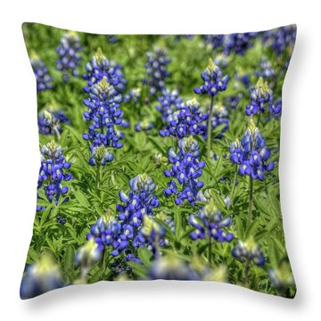 Heavenly Bluebonnets Throw Pillow