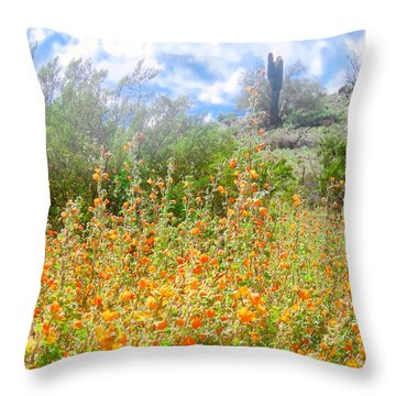 Heavenly Home In Arizona Throw Pillow