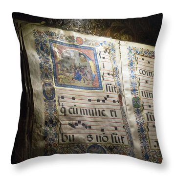 Throw Pillow featuring the photograph Heavenly Music by Alex Lapidus