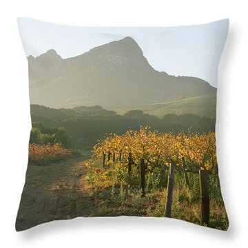 Helderburg Vineyard Throw Pillow