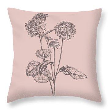 Helianthus Blush Pink Flower Throw Pillow