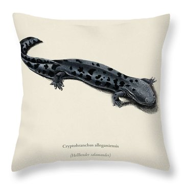 Hellbender Salamander  Cryptobanchus Alleganiernsis Illustrated By Charles Dessalines D Orbigny  1 Throw Pillow