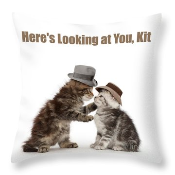 Throw Pillow featuring the photograph Here's Looking At You, Kit by Warren Photographic