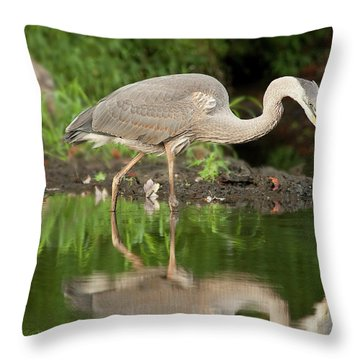 Heron Fishing Throw Pillow