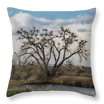 Throw Pillow featuring the photograph Heronry by Jon Burch Photography