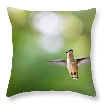 Throw Pillow featuring the photograph Hi by Candice Trimble