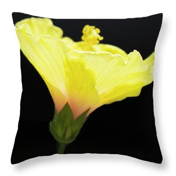 Hibiscus In Black Throw Pillow