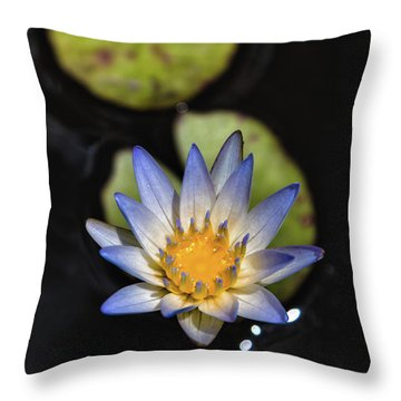 Hidden Jewel Throw Pillow