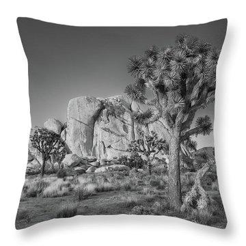 Hidden Valley Rock Throw Pillow