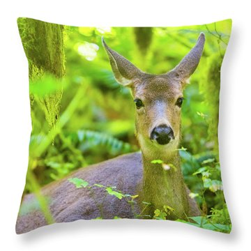 Hiding Deer Throw Pillow