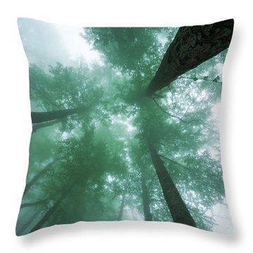 High In The Mist Throw Pillow