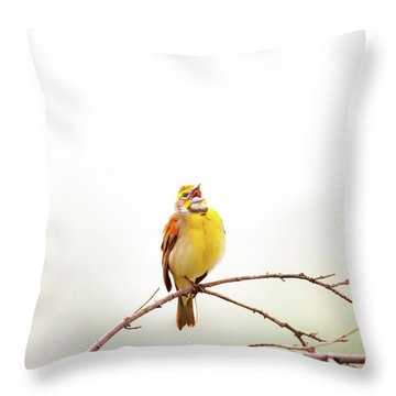 Throw Pillow featuring the photograph High Key Dickcissel by Jeff Phillippi