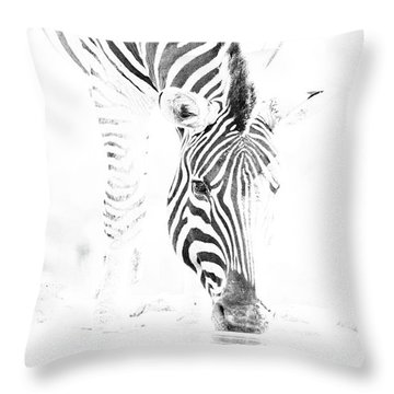 High Key Zebra Drinking Throw Pillow
