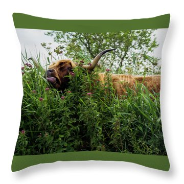 Throw Pillow featuring the photograph Highland Cow In Tall Grass by Scott Lyons