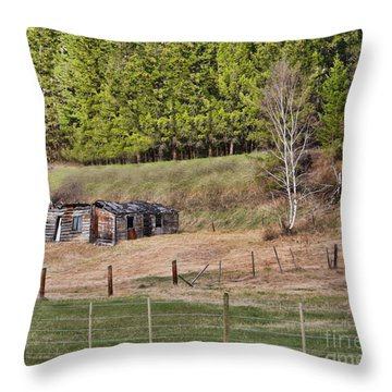 Highway History Throw Pillow