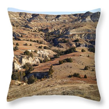 Throw Pillow featuring the photograph Hiker's Paradise by Carl Young
