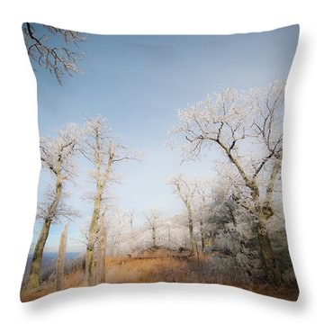 Hilltop Hoarfrost Throw Pillow