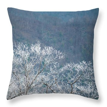 Hoarfrost Collects On Branches Throw Pillow