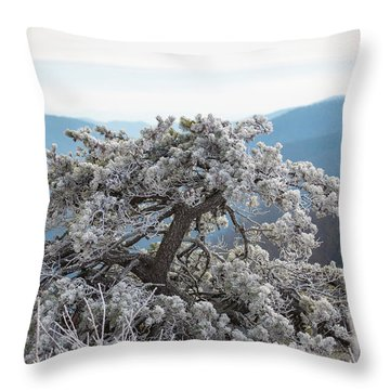 Hoarfrost In The Blue Ridge Mountains Throw Pillow