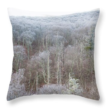 Hoarfrost In The Tree Tops Throw Pillow