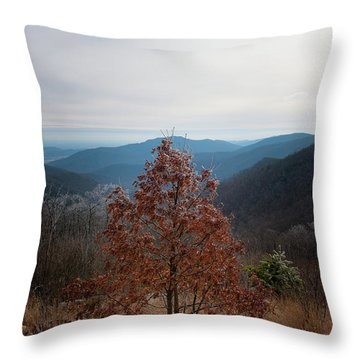 Hoarfrost On Fall Leaves Throw Pillow