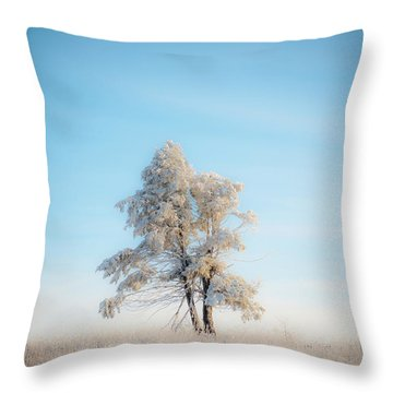 Throw Pillow featuring the photograph Hoarfrost On The Prairie by Mark Duehmig