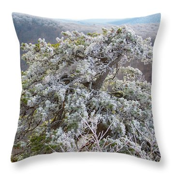Hoarfrost On Trees Throw Pillow