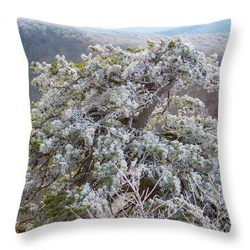 Hoarfrost On Trees Throw Pillow