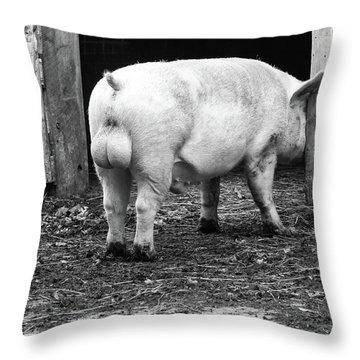 hog Throw Pillow