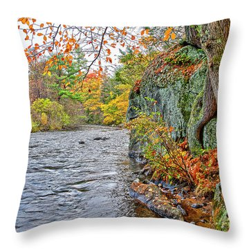 Hogback Dam Pool Throw Pillow