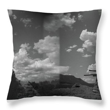 Holga Triptych 2 Throw Pillow