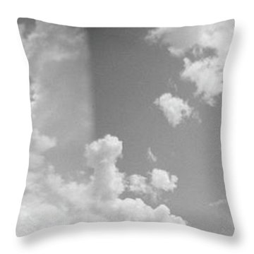 Holga Triptych 3 Throw Pillow