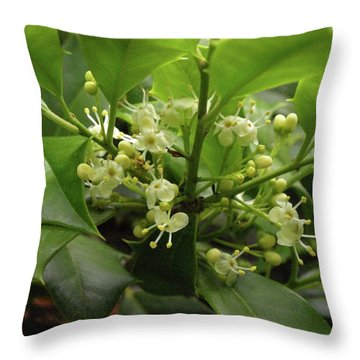 Holly Blossoms Throw Pillow